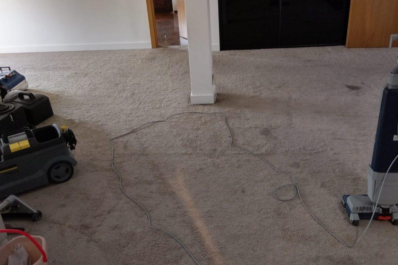 Czyszczenie wykładzin dywanowych w domach prywatnych - czy to się opłaca?